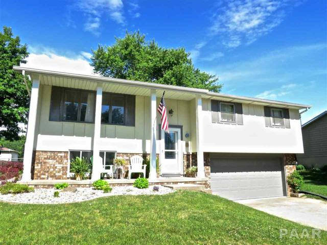 201 Tanglewood Lane, East Peoria, IL 61611 (#1185147) :: RE/MAX Preferred Choice