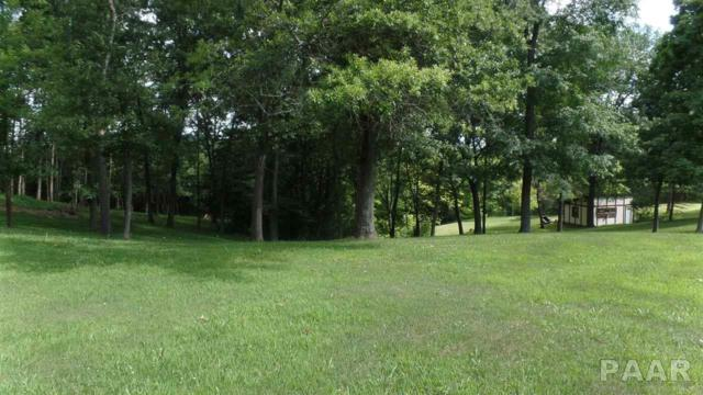 Lot 89 Deer Hart Drive, Chillicothe, IL 61523 (#PA1185159) :: Killebrew - Real Estate Group