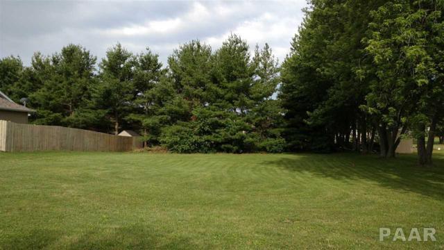 Lot 1 Saddlebrook Lane, Metamora, IL 61548 (#1185185) :: RE/MAX Preferred Choice