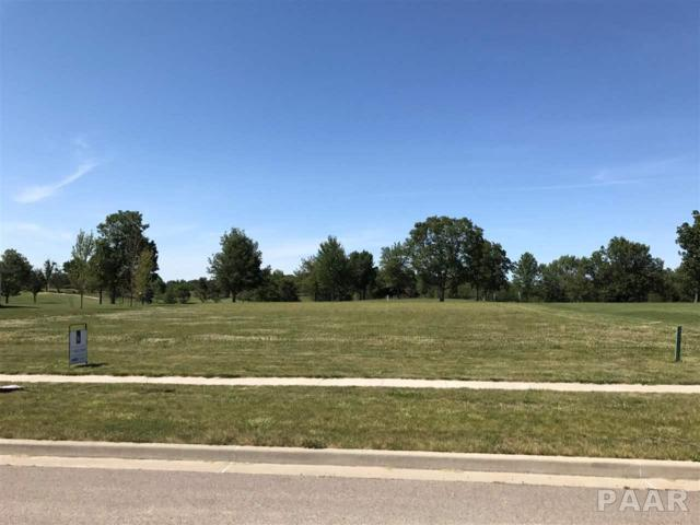 LOT 61 Hurff Drive, Elmwood, IL 61529 (#1185226) :: Adam Merrick Real Estate