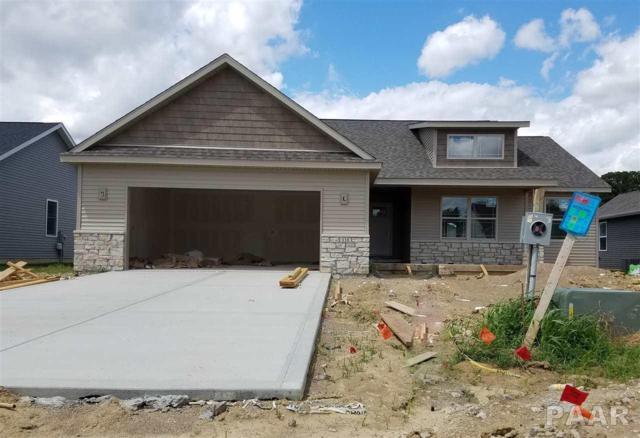 110 Cotton Lane, East Peoria, IL 61611 (#1185237) :: RE/MAX Preferred Choice