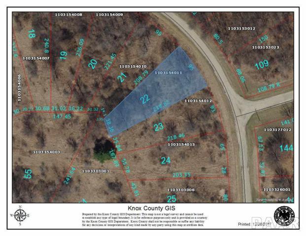 22 Forestview Road, Dahinda, IL 61428 (#1185337) :: Adam Merrick Real Estate