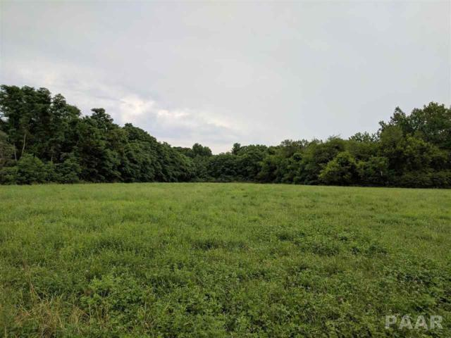 RR Middlegrove Road, Farmington, IL 61537 (#1185341) :: Adam Merrick Real Estate