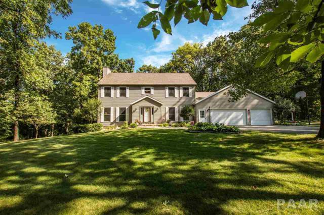 23 Woodford Way, Metamora, IL 61548 (#1185540) :: Adam Merrick Real Estate
