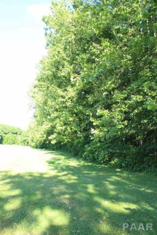 0 Enterprise Drive, Bartonville, IL 61607 (#1185602) :: Adam Merrick Real Estate