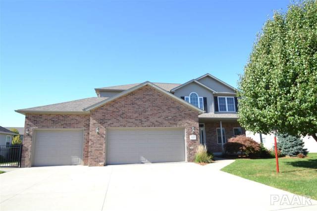 1129 Willow Lake Drive, Metamora, IL 61548 (#1185603) :: Adam Merrick Real Estate