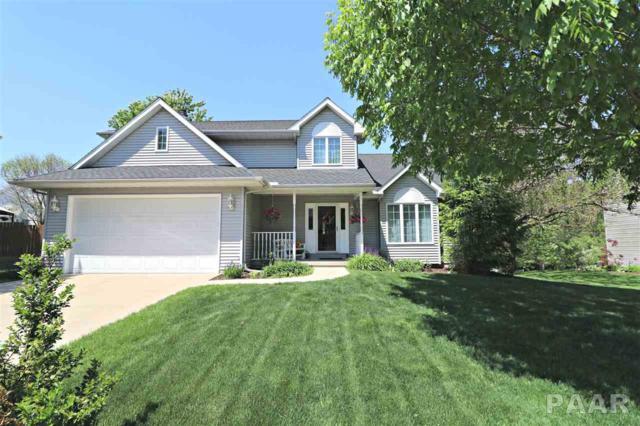 203 W Copperfield Drive, Dunlap, IL 61525 (#1185842) :: Adam Merrick Real Estate