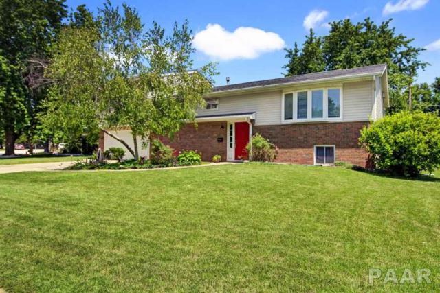 208 N Ohio Avenue, Morton, IL 61550 (#1185903) :: Adam Merrick Real Estate