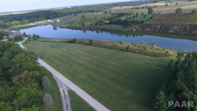 0 Willow Creek, Elmwood, IL 61529 (#1185936) :: Adam Merrick Real Estate