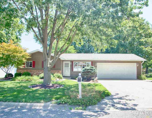 320 Circle Drive, Morton, IL 61550 (#1185939) :: Adam Merrick Real Estate