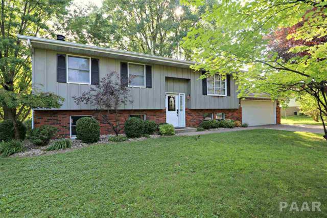 1384 N Hickory Hills Road, Metamora, IL 61548 (#1185964) :: Adam Merrick Real Estate
