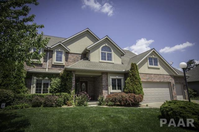 1219 W Poplar Woods Court, Dunlap, IL 61525 (#1186062) :: Adam Merrick Real Estate