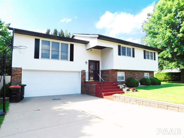 318 Arbor Vitae Drive, Germantown Hills, IL 61548 (#1186075) :: Adam Merrick Real Estate