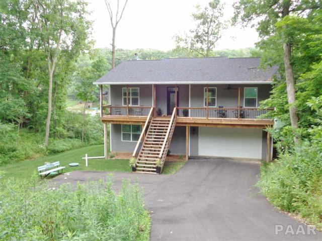 123 Oakview Court, Dahinda, IL 61428 (#1186205) :: Adam Merrick Real Estate