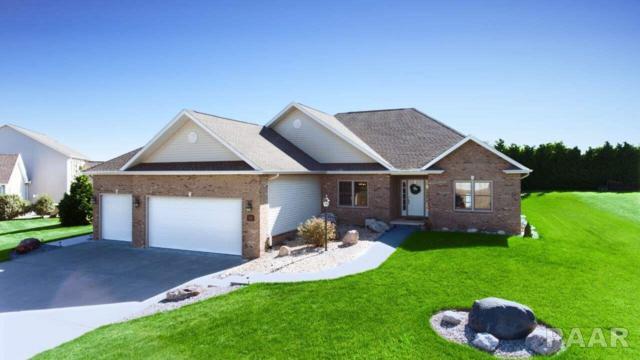 403 Cottingham Lane, Germantown Hills, IL 61548 (#1186446) :: RE/MAX Preferred Choice