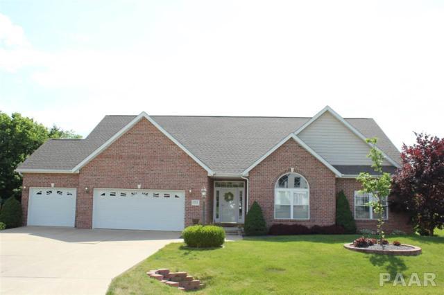 1104 Winterberry Lane, Germantown Hills, IL 61548 (#1186708) :: RE/MAX Preferred Choice