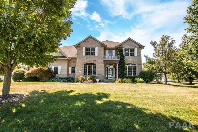 205 Elizabeth Pointe Drive, Germantown Hills, IL 61548 (#1186718) :: RE/MAX Preferred Choice
