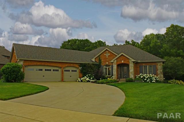 2324 W Pinnacle Drive, Dunlap, IL 61525 (#1186742) :: RE/MAX Preferred Choice