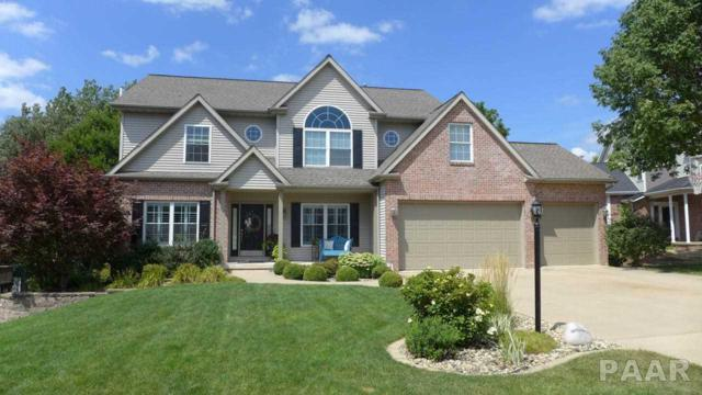 236 W Hillbrook Court, Dunlap, IL 61525 (#1186750) :: RE/MAX Preferred Choice