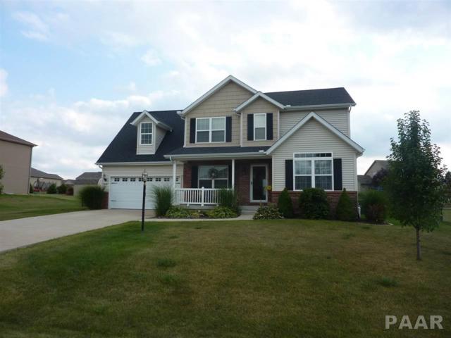 306 Hannah Drive, Germantown Hills, IL 61548 (#1186875) :: RE/MAX Preferred Choice