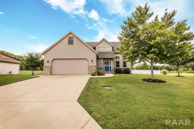 602 Park Trail Road, Mackinaw, IL 61755 (#1187140) :: Adam Merrick Real Estate