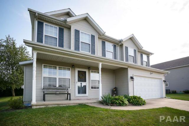 439 Mackenzie Place, Germantown Hills, IL 61548 (#1187251) :: RE/MAX Preferred Choice