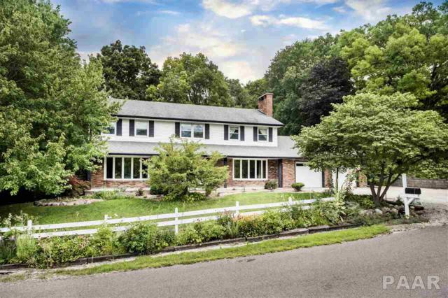 178 E South Lakeview Drive, East Peoria (Germantown Hills/Metamora), IL 61611 (#1187367) :: Adam Merrick Real Estate