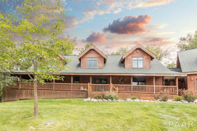 10 Scarlet Oak Court, Dahinda, IL 61428 (#1187561) :: Adam Merrick Real Estate