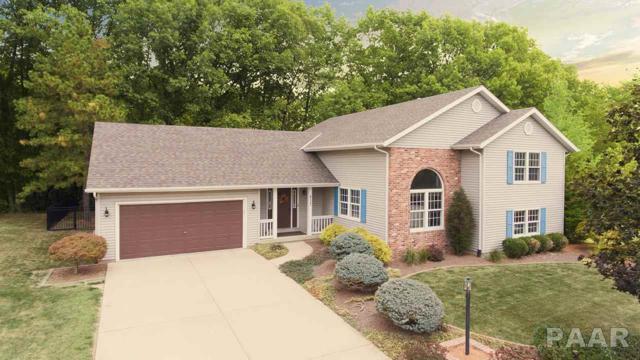 217 Warrior Way Way, Germantown Hills, IL 61548 (#1188166) :: Adam Merrick Real Estate