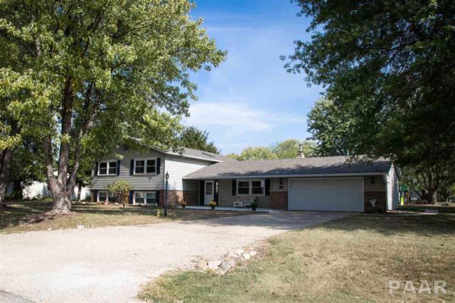 13444 N Dover Lane, Chillicothe, IL 61523 (#1188282) :: Adam Merrick Real Estate
