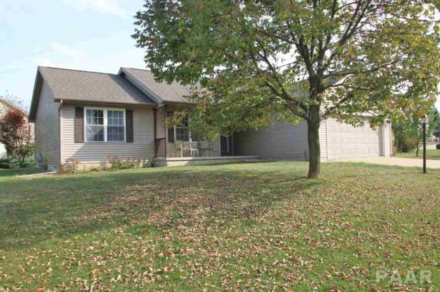 425 Mackenzie Place, Germantown Hills, IL 61548 (#1188367) :: RE/MAX Preferred Choice