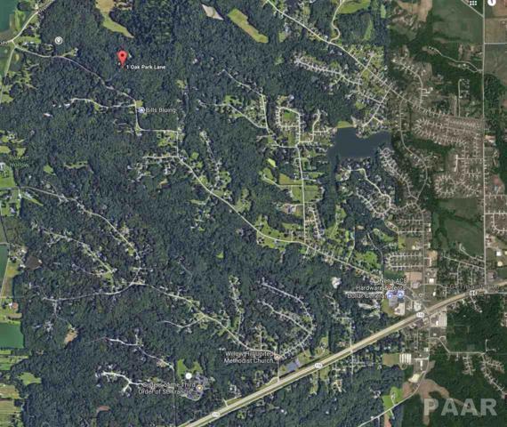 E Douglas Road, Metamora, IL 61548 (#1188476) :: RE/MAX Preferred Choice
