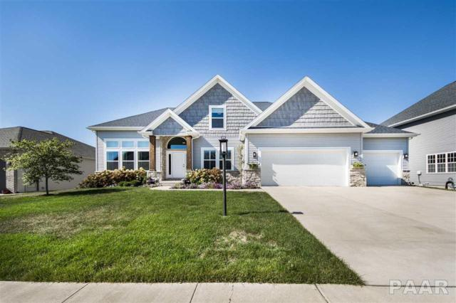 11217 N Sycamore Creek Drive, Dunlap, IL 61525 (#1188583) :: Adam Merrick Real Estate