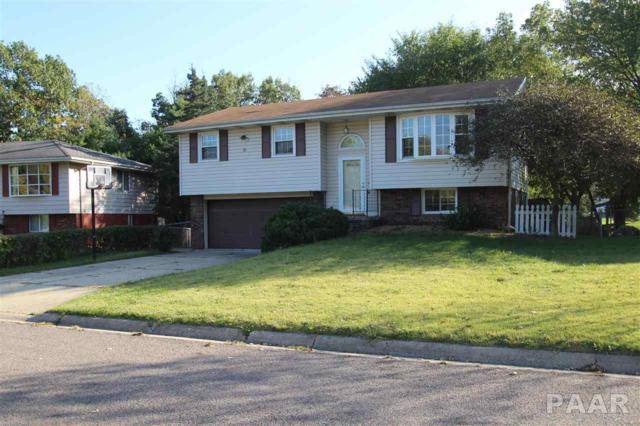 208 Season Drive, East Peoria, IL 61611 (#1188638) :: RE/MAX Preferred Choice