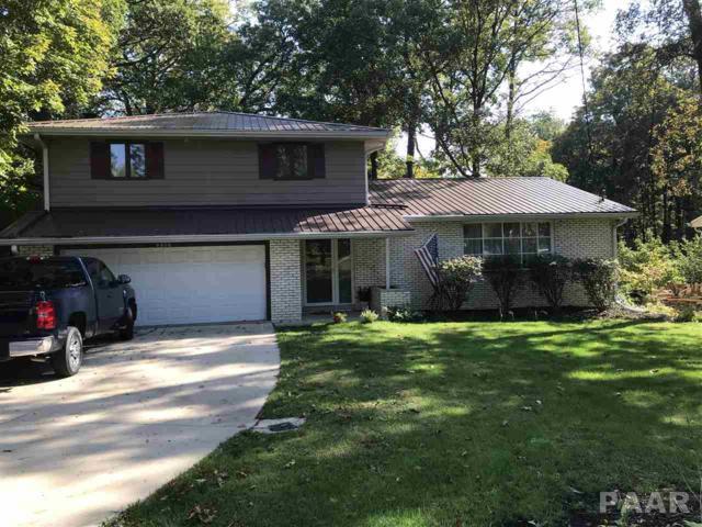 9010 N Picture Ridge, Peoria, IL 61615 (#1188652) :: Adam Merrick Real Estate
