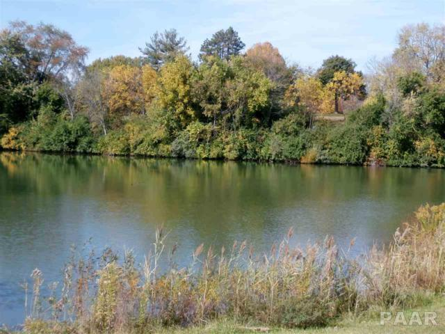 1925 North Lake Drive, Pekin, IL 61554 (#1188833) :: Adam Merrick Real Estate
