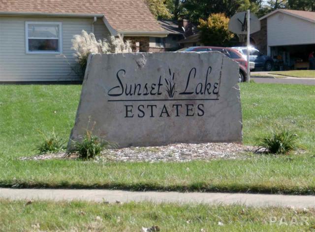 LOT 2 North Lake Drive, Pekin, IL 61554 (#1188835) :: Adam Merrick Real Estate