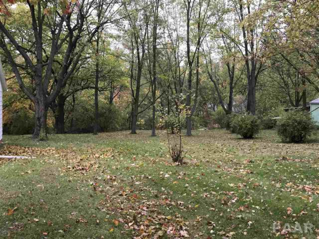 400 Peach Street, Washington, IL 61571 (#1188999) :: Adam Merrick Real Estate