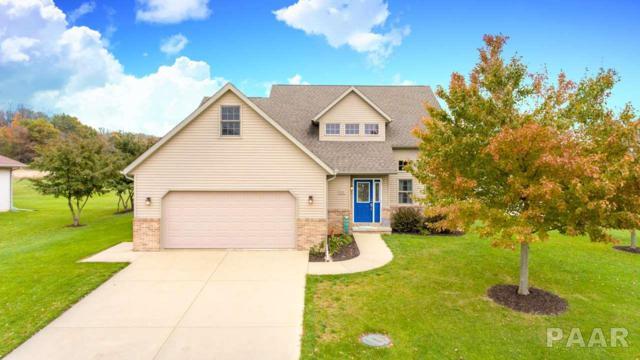 602 Park Trail, Mackinaw, IL 61755 (#1189096) :: Adam Merrick Real Estate