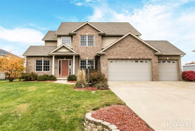 1233 Winterberry Avenue, Germantown Hills, IL 61548 (#1189191) :: RE/MAX Preferred Choice