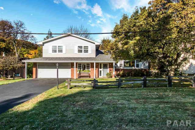 9175 N Picture Ridge, Peoria, IL 61615 (#1189260) :: Adam Merrick Real Estate