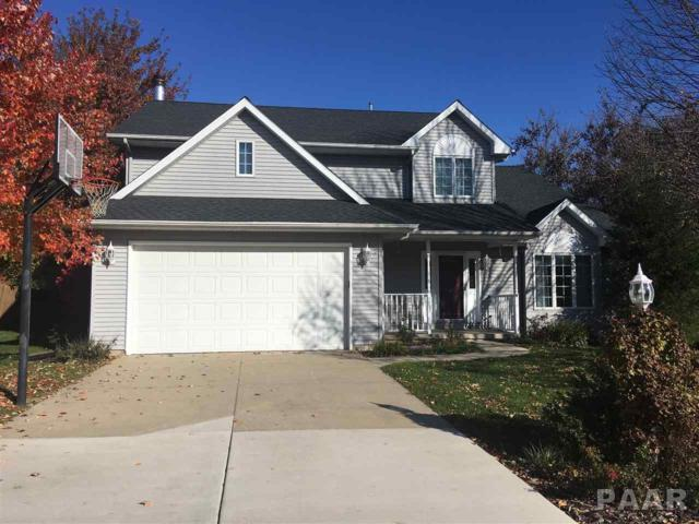 203 W Copperfield Drive, Dunlap, IL 61525 (#1189267) :: Adam Merrick Real Estate