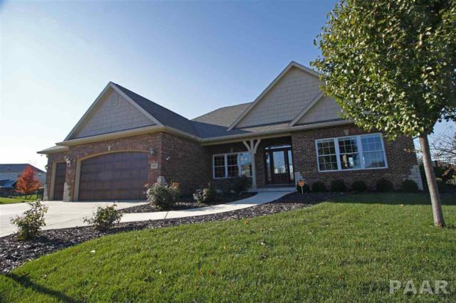 11027 N Emerald Court, Dunlap, IL 61525 (#1189277) :: Adam Merrick Real Estate
