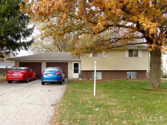 205-207 Briarbrook Drive, East Peoria, IL 61611 (#1189450) :: Adam Merrick Real Estate