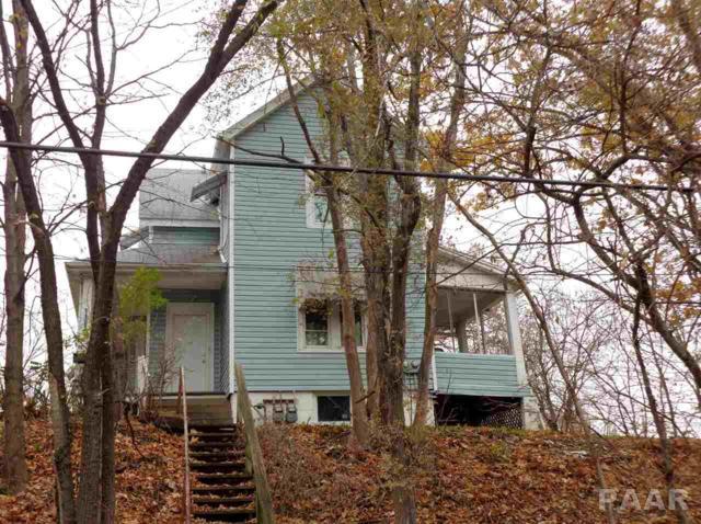 1103 W Nebraska Avenue, Peoria, IL 61604 (#1189478) :: Adam Merrick Real Estate