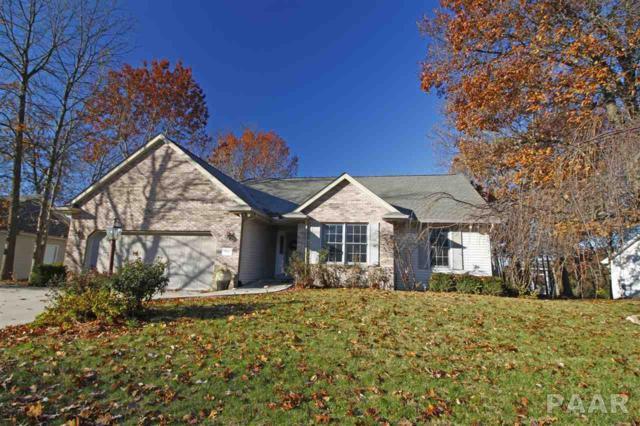 104 Scenic Bluff Drive, East Peoria, IL 61611 (#1189546) :: Adam Merrick Real Estate