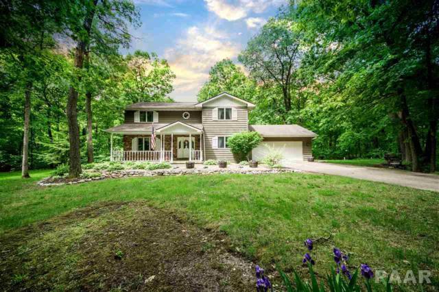 12227 N Wood Ridge Court, Dunlap, IL 61525 (#1189696) :: RE/MAX Preferred Choice