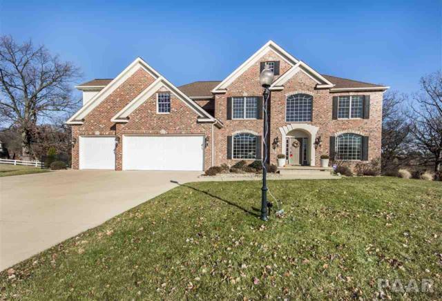 6842 N Stonecrest Court, Peoria, IL 61615 (#1189908) :: Adam Merrick Real Estate