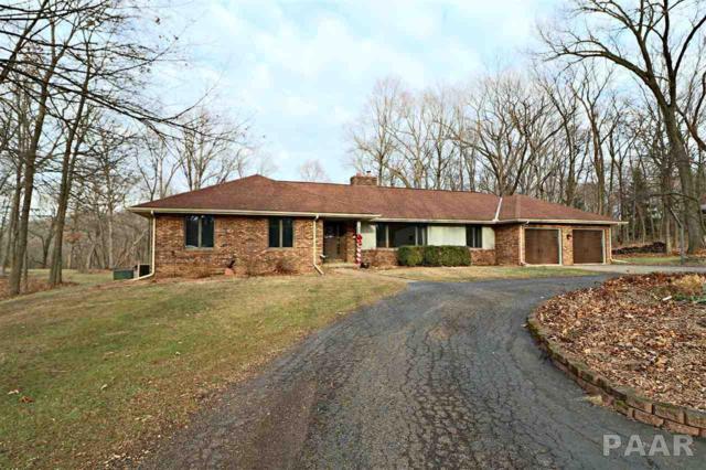 1621 W Cedar Hills Drive, Dunlap, IL 61525 (#1189918) :: RE/MAX Preferred Choice