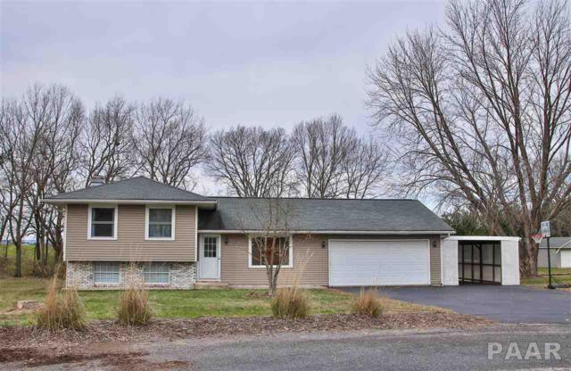 4013 E Chelsea Court, Chillicothe, IL 61523 (#1189934) :: RE/MAX Preferred Choice